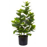Rogue Stella Magnolia Bush Green/Black 40x36x77cm