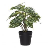 Rogue Mini Aluminum Bush-Garden Pot Green/Black 22x22x28cm