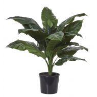 Rogue Giant Spathiphyllum-Garden Pot Green/Black 94x90x90cm