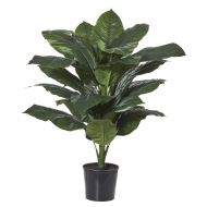 Rogue Giant Spathiphyllum-Garden Pot Green/Black 83x63x122cm