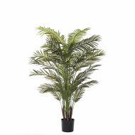 Rogue Areca Palm Green 110x110x183cm