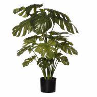 Rogue Monstera Plant-Garden Pot Green/Black 70x70x85cm