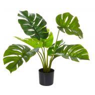 Rogue Monstera Plant-Garden Pot Green/Black 45x45x65cm