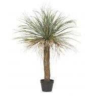 Rogue Grass Tree Green 88x88x110cm