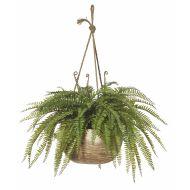 Rogue Boston Fern-Dansk Hanging Bowl Green/Natural 73x73x73cm