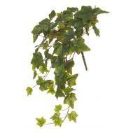 Rogue Forest Ivy Bush Green 30x30x50cm