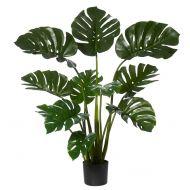 Rogue Monstera Plant-Garden Pot Green/Black 110x110x122cm