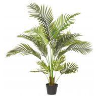 Rogue Areca Palm Green 90x90x120cm